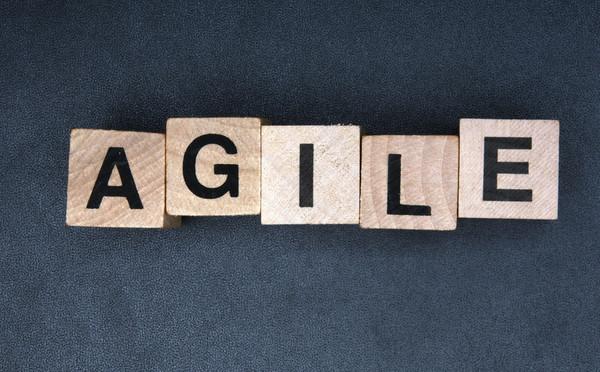 Agilnost kao imperativ IT kompanija